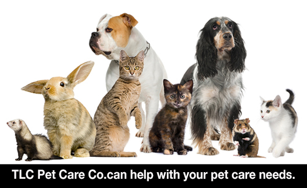 TLC Pet Care Co. Woodbridge NJ Pet Sitting Dog Walking Dogs Cats Rabbits